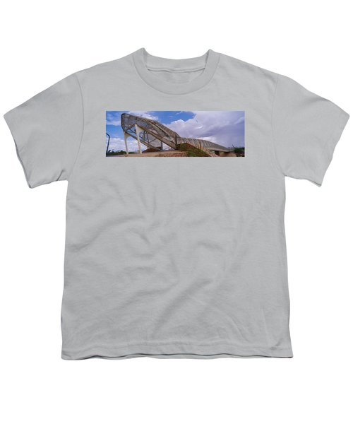 Pedestrian Bridge Over A River, Snake Youth T-Shirt by Panoramic Images