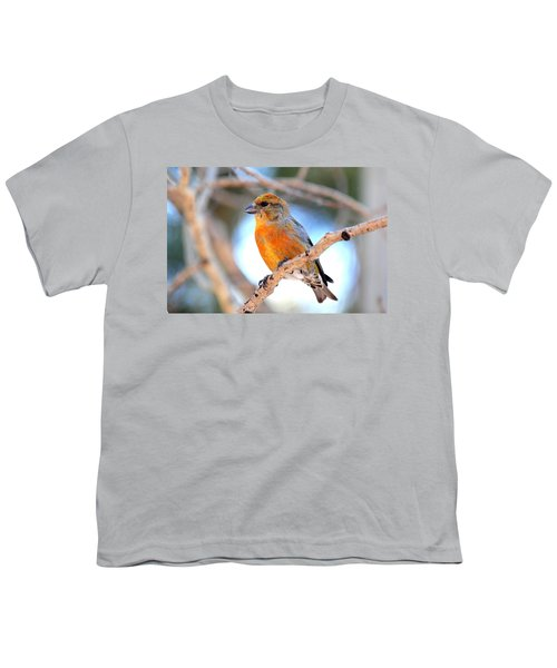 Red Crossbill On Aspen Youth T-Shirt by Marilyn Burton