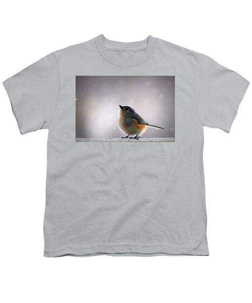 Tufted Titmouse Youth T-Shirt by Cricket Hackmann