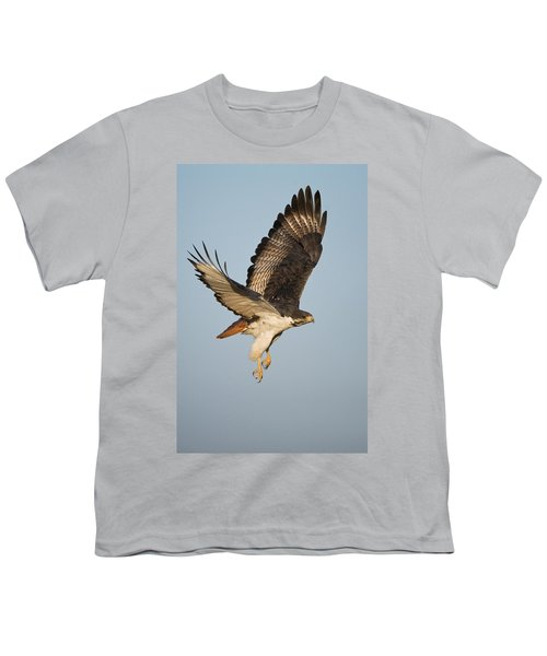 Augur Buzzard Buteo Augur Flying Youth T-Shirt by Panoramic Images