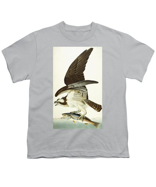 Fish Hawk Youth T-Shirt by John James Audubon