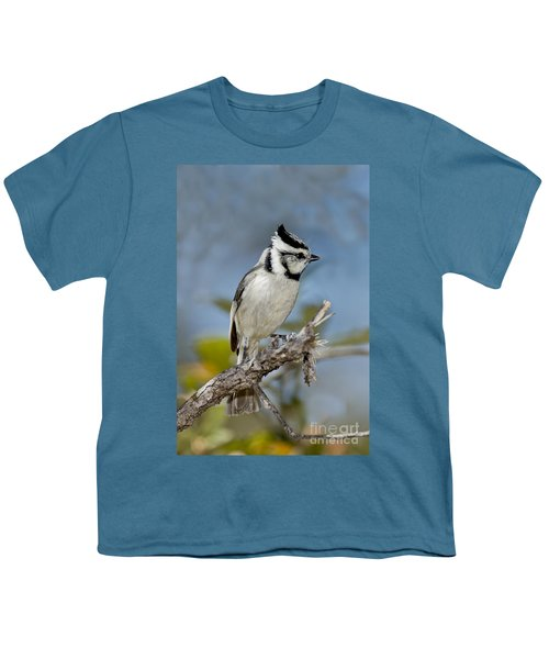 Bridled Titmouse Youth T-Shirt by Anthony Mercieca
