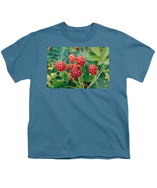 Highbush Blackberry Rubus Allegheniensis Grows Wild In Old Fields And At Roadsides Youth T-Shirt by Anonymous