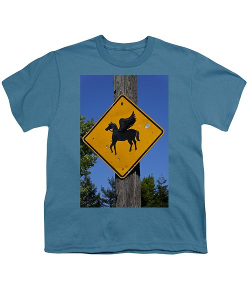 Pegasus Road Sign Youth T-Shirt by Garry Gay
