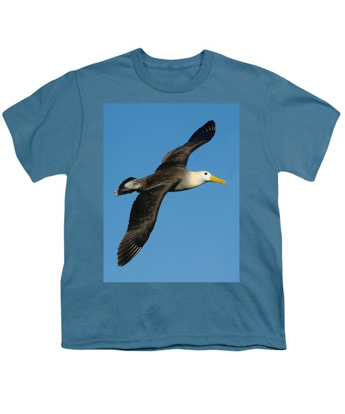 Waved Albatross Diomedea Irrorata Youth T-Shirt by Panoramic Images