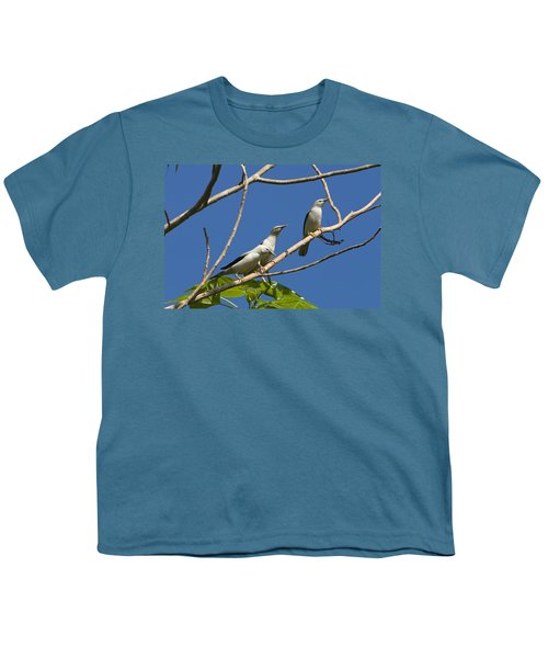 White-headed Starlings Havelock Isl Youth T-Shirt by Konrad Wothe