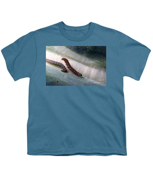 Diamondback Moth Larvae Youth T-Shirt by Science Source