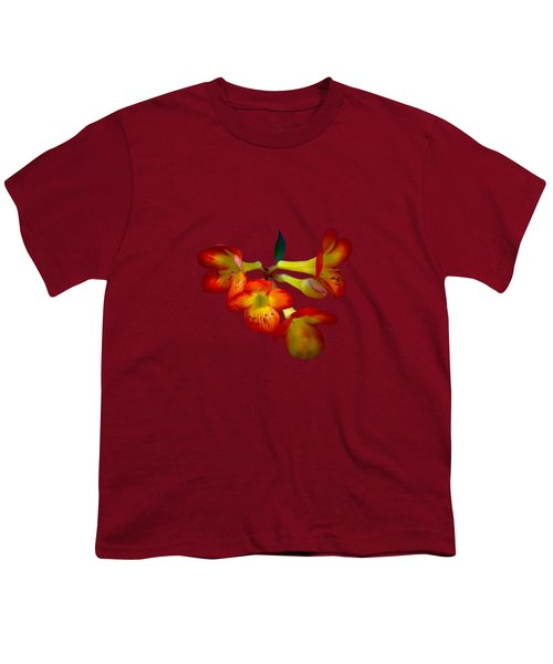 Color Burst Youth T-Shirt by Mark Andrew Thomas