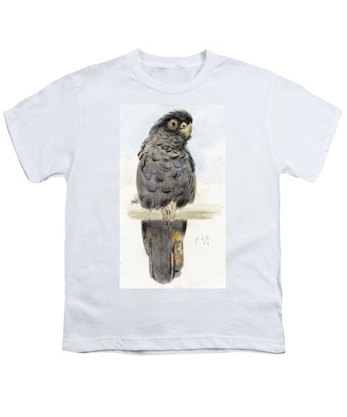 A Black Cockatoo Youth T-Shirt by Henry Stacey Marks