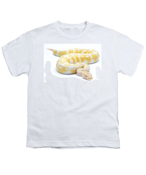 Albino Royal Python Youth T-Shirt by Michel Gunther