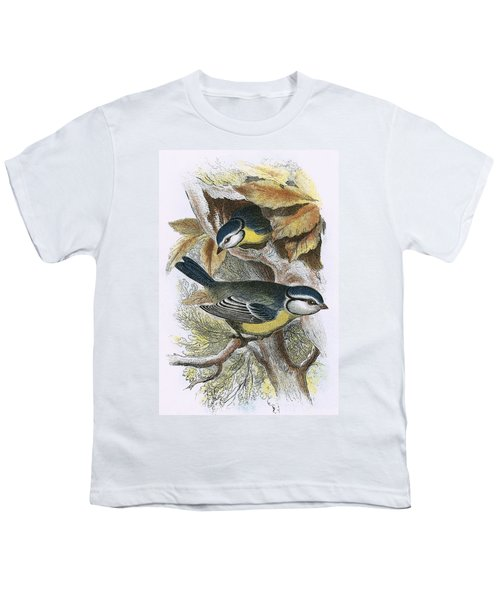Blue Titmouse Youth T-Shirt by English School