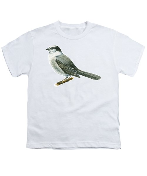 Canada Jay Youth T-Shirt by Anonymous