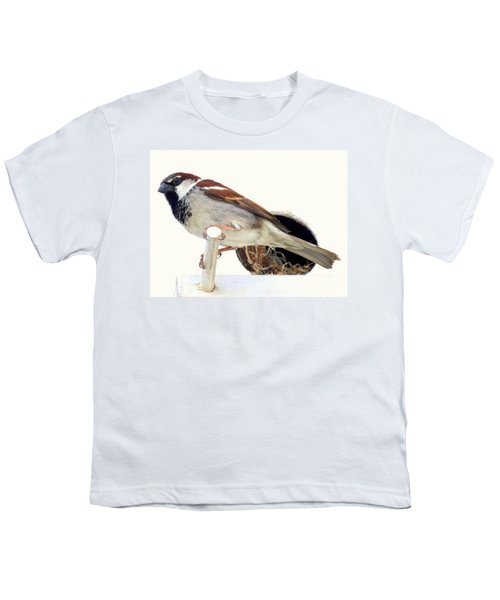 Little Sparrow Youth T-Shirt by Karen Wiles