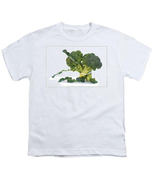 Pas De Trois Youth T-Shirt by Nikolyn McDonald