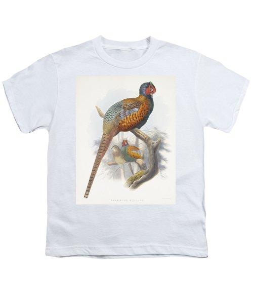 Phasianus Elegans Elegant Pheasant Youth T-Shirt by Daniel Girard Elliot