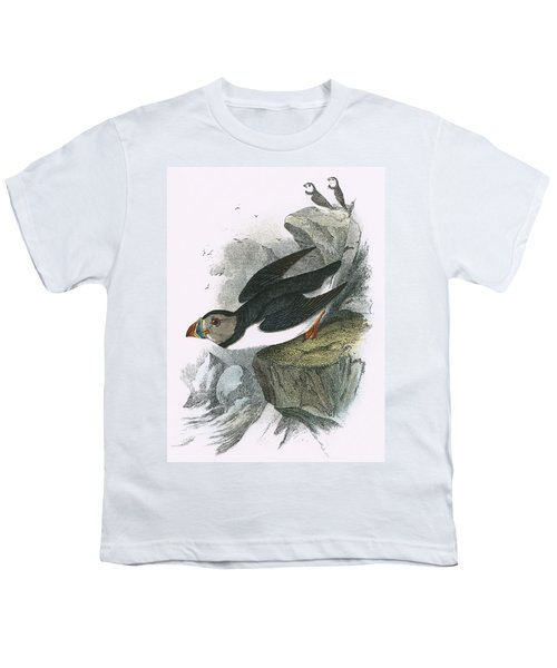 Puffin Youth T-Shirt by English School