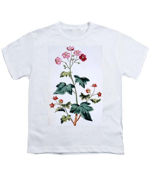 Sweet Canada Raspberry Youth T-Shirt by John Edwards