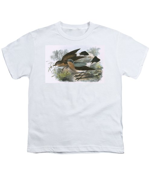 Wheatear Youth T-Shirt by English School