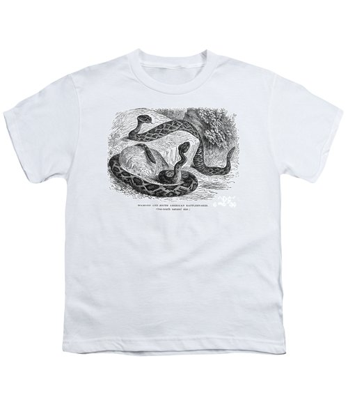 Rattlesnakes Youth T-Shirt by Granger