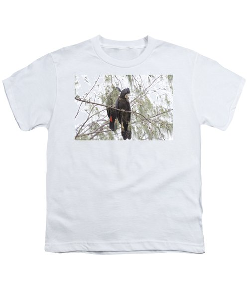Red Tailed Black Cockatoos Youth T-Shirt by Douglas Barnard