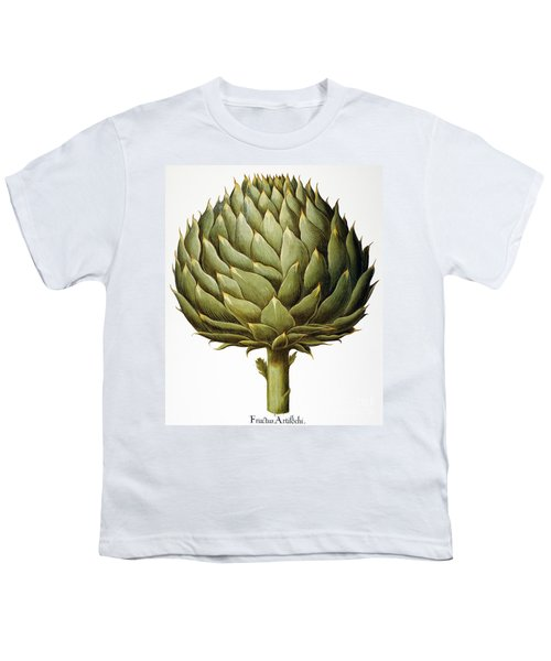 Artichoke, 1613 Youth T-Shirt by Granger