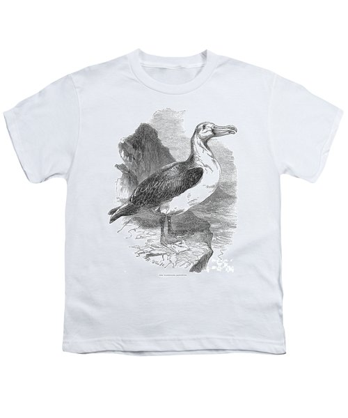 Albatross Youth T-Shirt by Granger