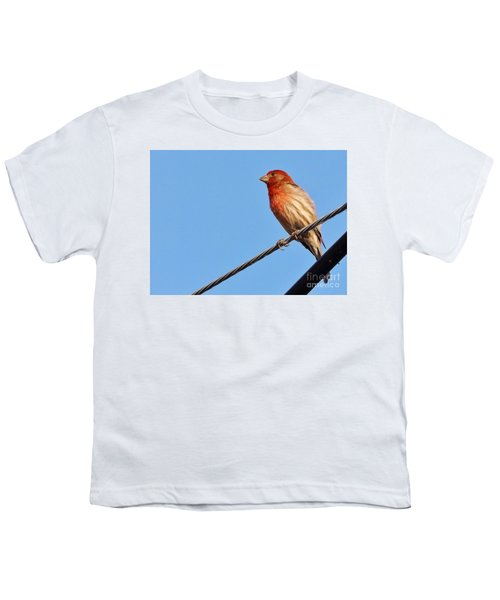 American Crossbill On Wire     Spring   Indiana   Youth T-Shirt by Rory Cubel