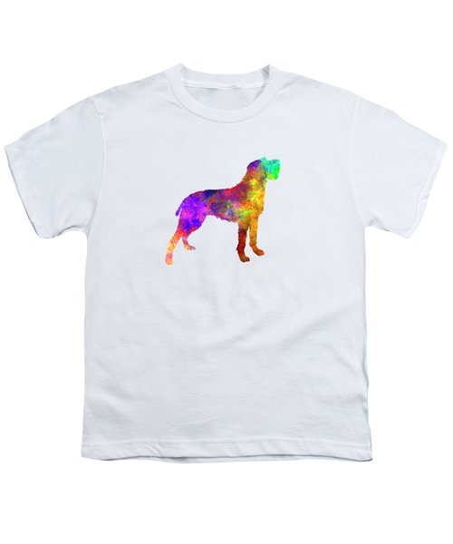 Bohemian Wirehaired Pointing Griffon In Watercolor Youth T-Shirt by Pablo Romero
