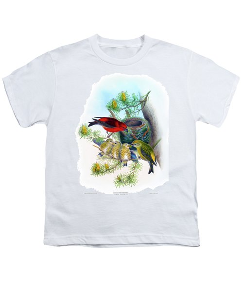 Common Crossbill Antique Bird Print John Gould Hc Richter Birds Of Great Britain  Youth T-Shirt by John Gould - HC Richter