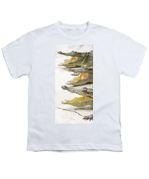 Crocodile Choir Youth T-Shirt by Jorgo Photography - Wall Art Gallery