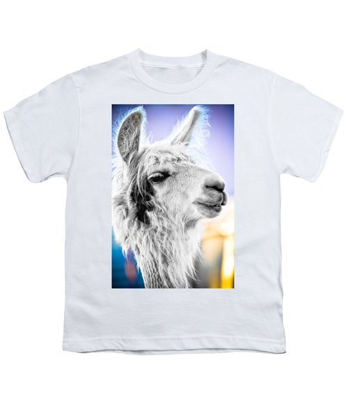 Dirtbag Llama Youth T-Shirt by TC Morgan