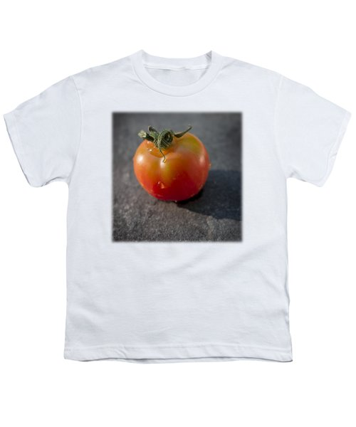 Sweet 100 T Youth T-Shirt by David Stone