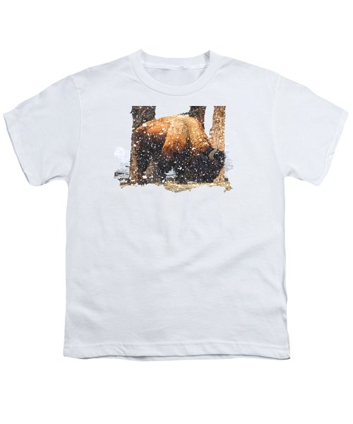 The Majestic Bison Youth T-Shirt by Image Takers Photography LLC - Carol Haddon