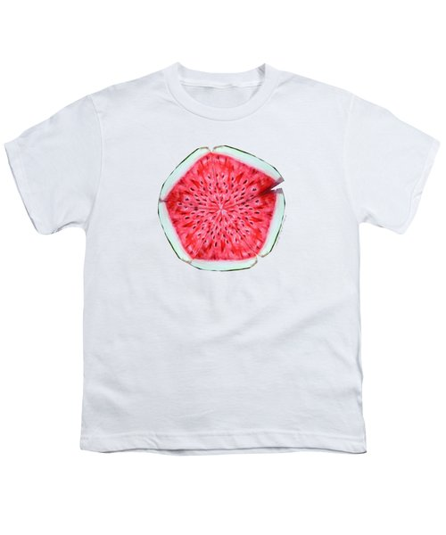 Watermelon Star Wheel Youth T-Shirt by Shana Rowe Jackson