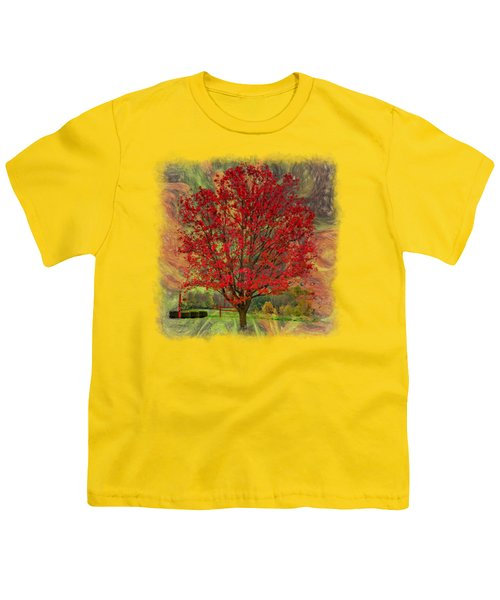 Autumn Scenic 2 Youth T-Shirt by John M Bailey