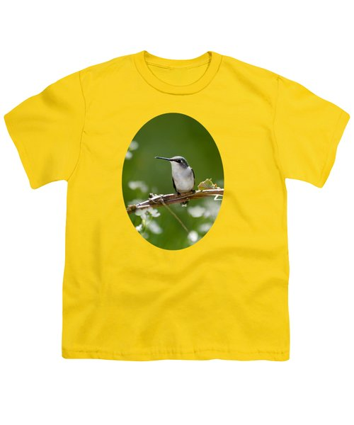 Meadow Hummingbird Youth T-Shirt by Christina Rollo
