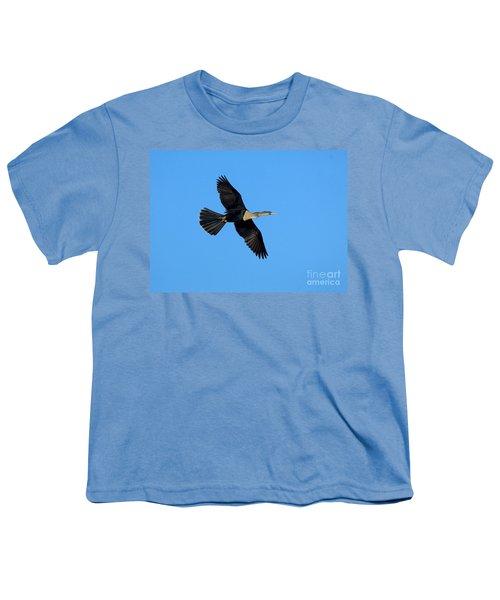Anhinga Female Flying Youth T-Shirt by Anthony Mercieca
