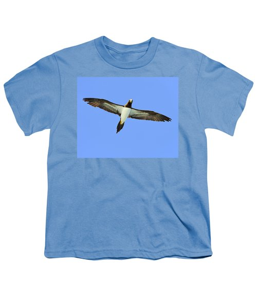 Brown Booby Youth T-Shirt by Tony Beck