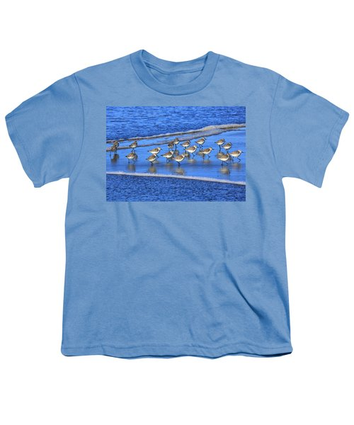 Sandpiper Symmetry Youth T-Shirt by Robert Bynum