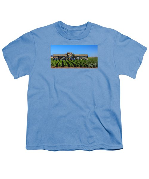 Winter Lettuce Harvest Youth T-Shirt by Robert Bales