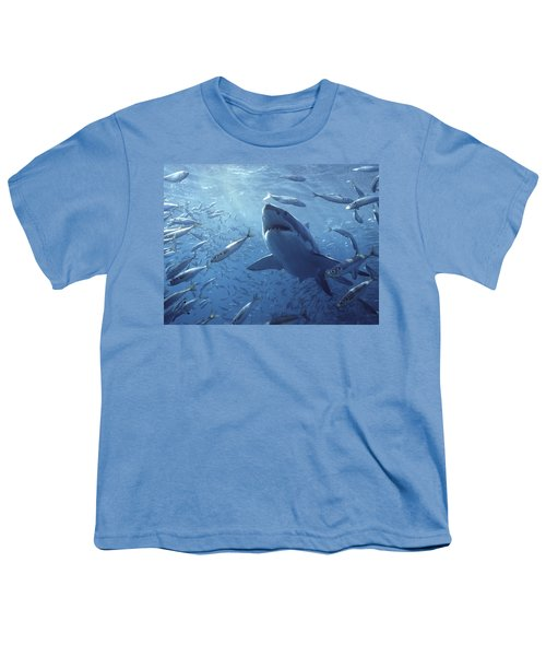 Great White Shark Carcharodon Youth T-Shirt by Mike Parry
