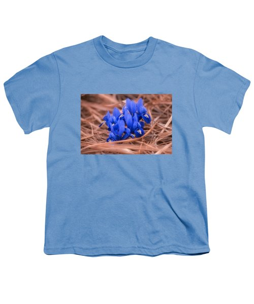 Irises Youth T-Shirt by Konstantin Sevostyanov