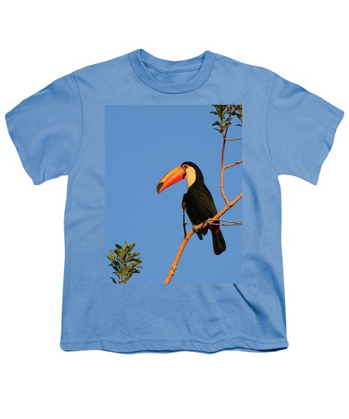 Toco Toucan Youth T-Shirt by Bruce J Robinson