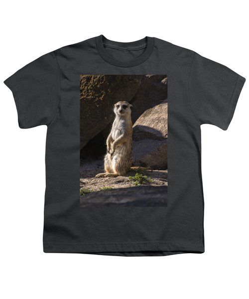 Meerkat Looking Forward Youth T-Shirt by Chris Flees
