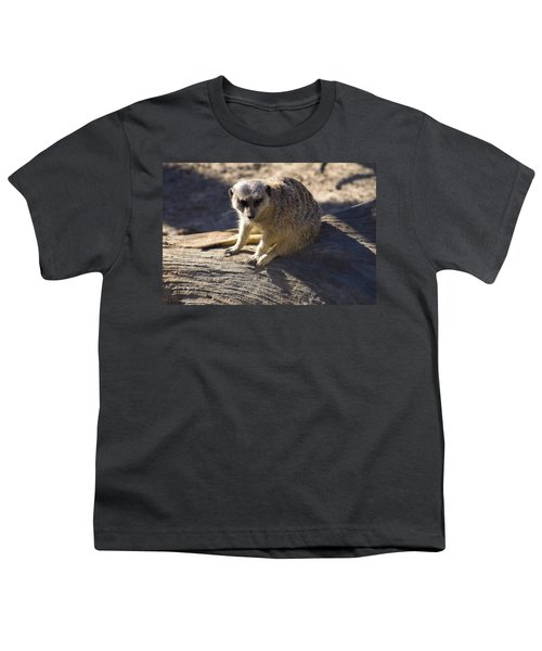 Meerkat Resting On A Rock Youth T-Shirt by Chris Flees