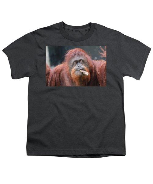 Orangutan Portrait Youth T-Shirt by Dan Sproul