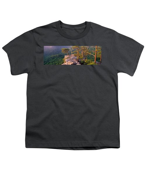 Trees On A Mountain, Buzzards Roost Youth T-Shirt by Panoramic Images