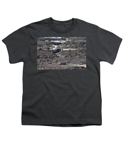 Gracious Ascent Youth T-Shirt by Douglas Barnard