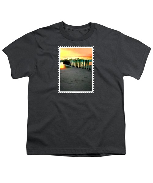 Sea Gulls On Pilings  At Sunset Youth T-Shirt by Elaine Plesser