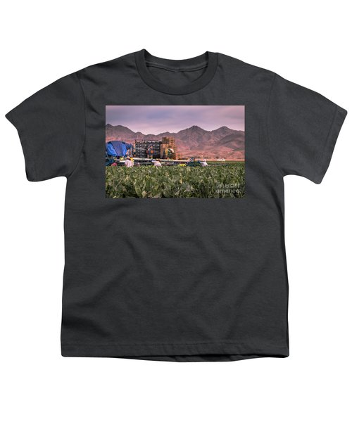 Cauliflower Harvest Youth T-Shirt by Robert Bales